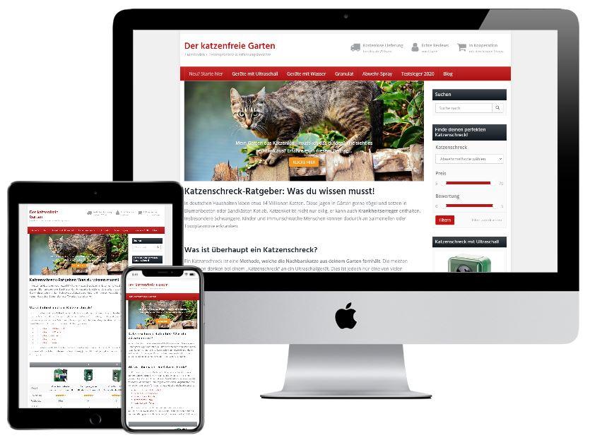 Webseite erstellen lassen in Alzey und Kirchheimbolanden